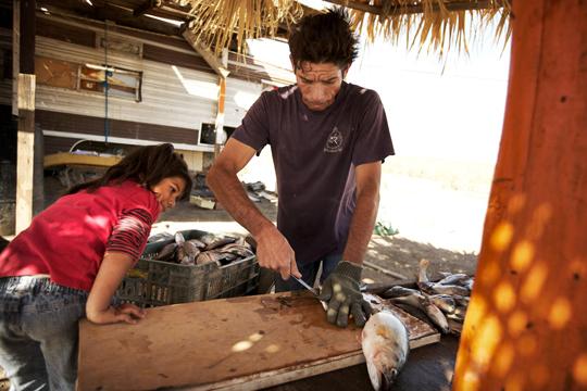 Fishing in Rio Hardy